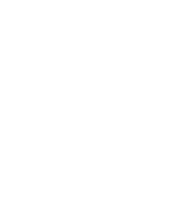 •-TB-brain03-•-cognition-•-flat